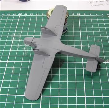 Hawk Major 09.JPG by warby22