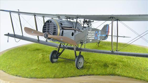 Bristol Fighter 45.JPG by warby22