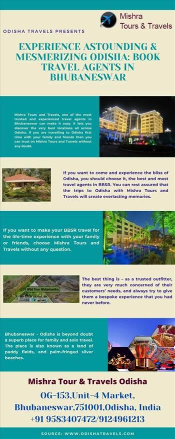 Experience Astounding & Mesmerizing Odisha Book Travel Agents in Bhubaneswar.jpg by Odishatravels