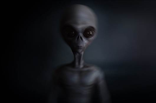 Scientists went through numerous researches to show extraterrestrial beings attempted to speak to the earth, however they had been wrong. Visit More- https://tattoomagz.com/aliens-on-earth/