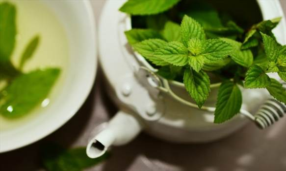 Peppermint is an ancient herb and dates again to early 1500 BC. The historical Egyptians used to position the dried leaves of peppermint on the tombs maximum possibly for its sparkling robust scent. Visit More- https://www.technewsera.com/peppermint-oil