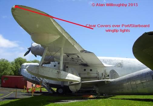 NZ4115 Wingtip lens.jpg -