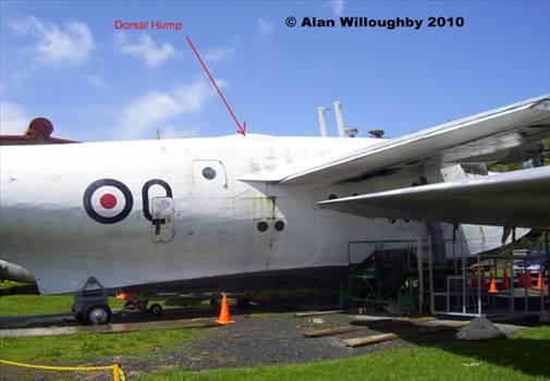 Rear entry hatch and dorsal hump.jpg -