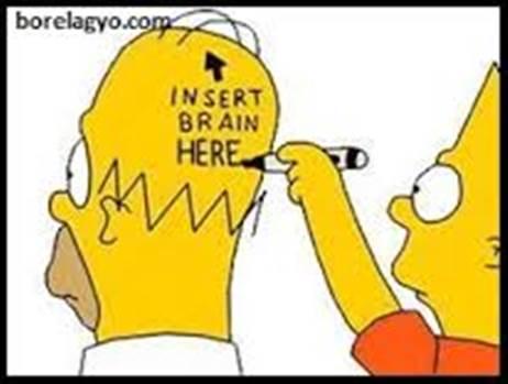 brain.jpg -
