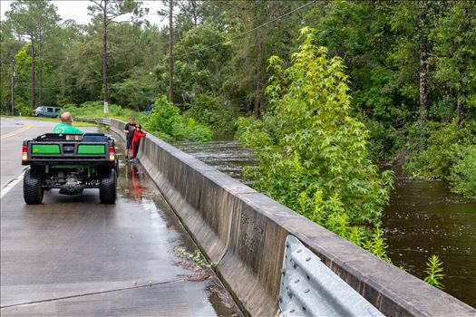 bear creek out of bank 4 August 02, 2018.jpg by Terry Kelly Photography