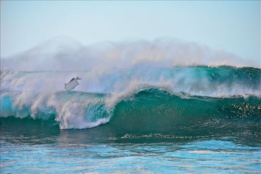 bodyboarding northshore oahu hawaii ss al sf RAW1138.jpg by Terry Kelly Photography