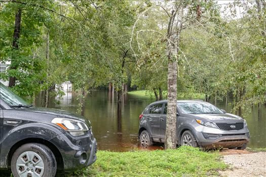 bear creek out of bank 8 August 02, 2018.jpg by Terry Kelly Photography