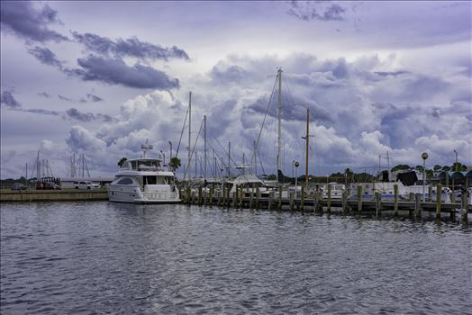 The Lucky Dog at Panama City Marina 5023.jpg by Terry Kelly Photography