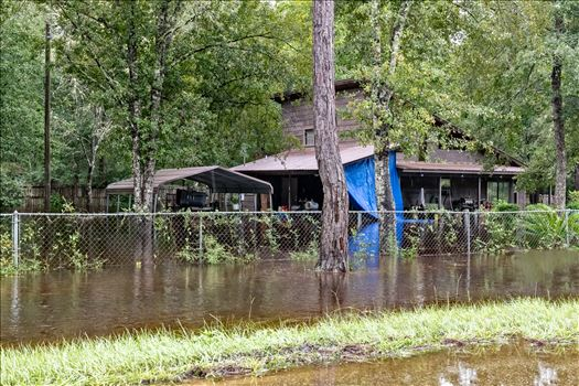 bear creek out of bank August 02, 2018.jpg by Terry Kelly Photography