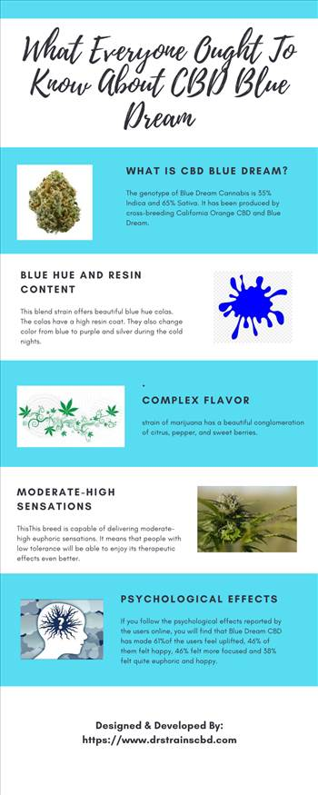 What Everyone Ought To Know About CBD Blue Dream.png by drstrainscbd