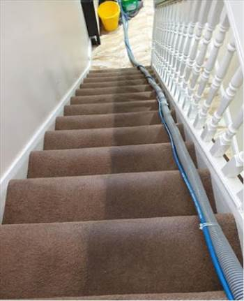 Carpet cleaning Perivale by Fibreclean
