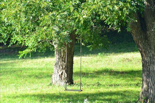 Shady Lonesome Dove Swing.JPG by 405 Exposure