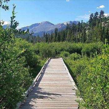 Colorado RMNP Path.jpg by 405 Exposure