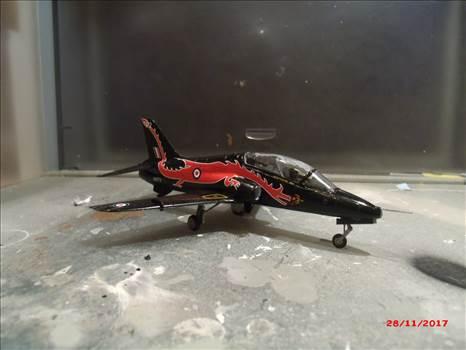 dragonhawk 001.JPG by MadNurseGaz