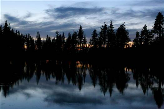 The Blue Hour -