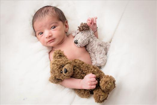Newborn 17 by Jody Vaughan Infinity Images