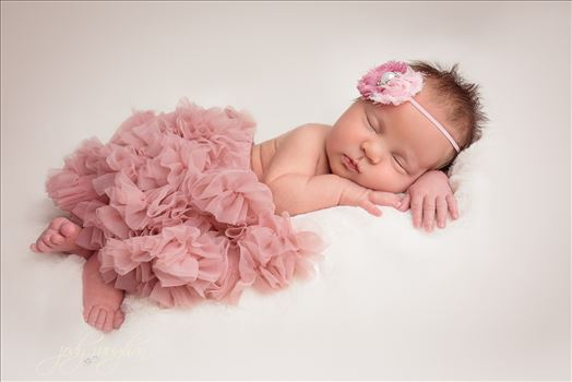 Newborn 15 by Jody Vaughan Infinity Images
