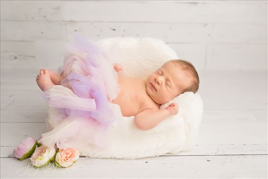Newborn 36 by Jody Vaughan Infinity Images