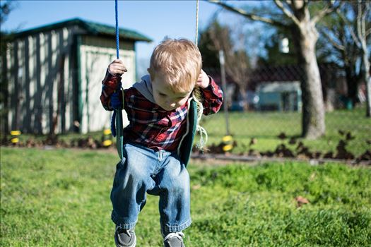 On the Swing -