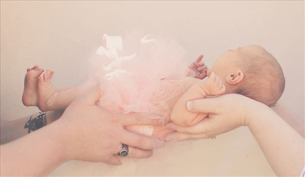 hold.jpg by Unbound Photography