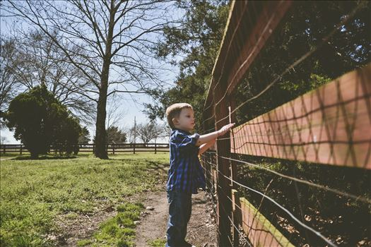 Looking through the fence by Unbound Photography