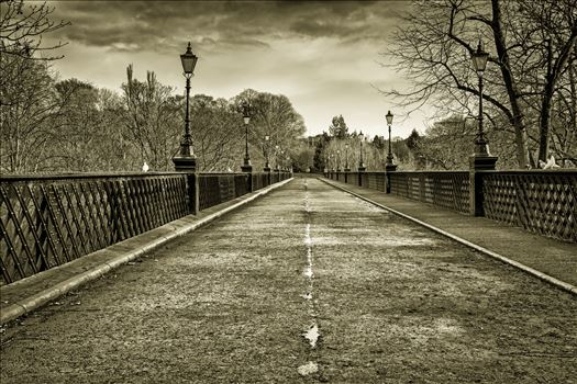 Armstrong Bridge, Jesmond Dene, Newcastle by Graham Dobson Photography