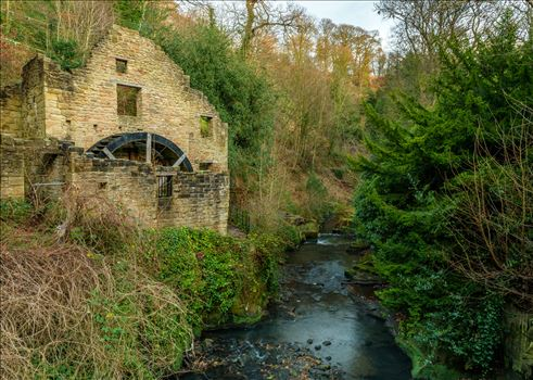 The Old Mill, Jesmond Dene, Newcastle by Graham Dobson Photography