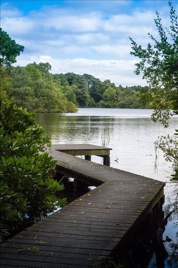 Bolam Lake, Northumberland by Graham Dobson Photography