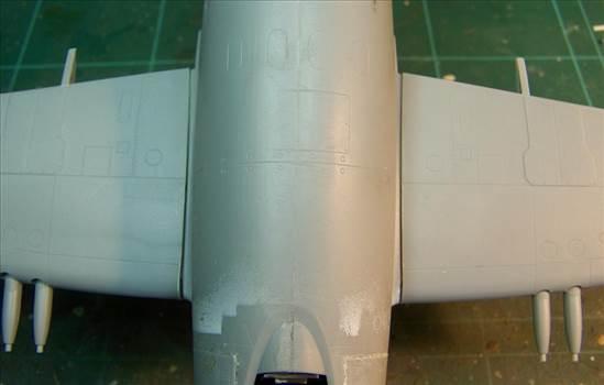 Trumpeter Attacker F1 56.JPG by Alex Gordon