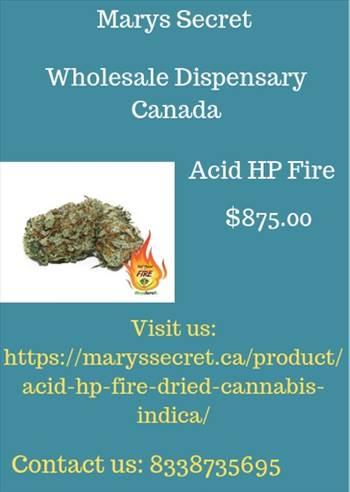 Marys Secret- Wholesale Dispensary Canada.jpg by maryssecret