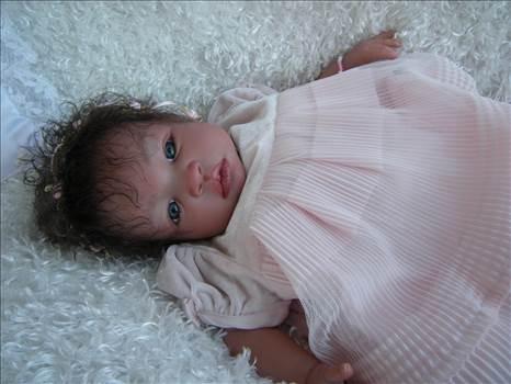 Amber Rose (3).JPG by Teresa Snyder-9642