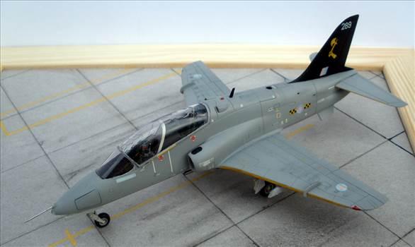 Hawk-51.jpg by giorgion