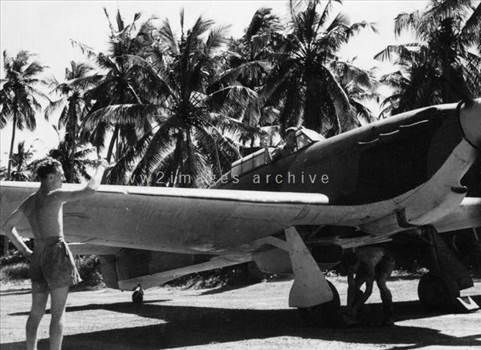 hurricane in ceylon 2.jpg by Tony