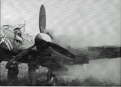 Bf110Skeleton 3.jpg -