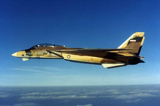 IIAF-F-14.jpg -