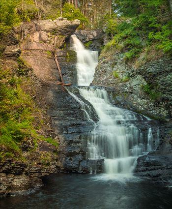 Raymondskill Falls by Buckmaster
