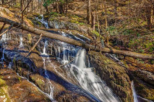 Tillman's Ravine by Buckmaster