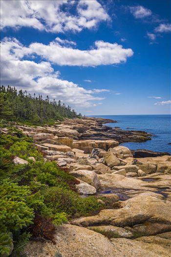Acadia,Maine Coast by Buckmaster