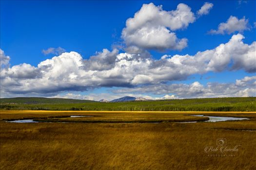 Somewhere in Yellowstone National Park -
