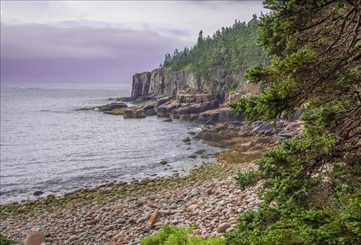 Otter Cliffs in Acadia - Famous Otter Cliffs in Acadia National Park, Bar Harbor, Maine