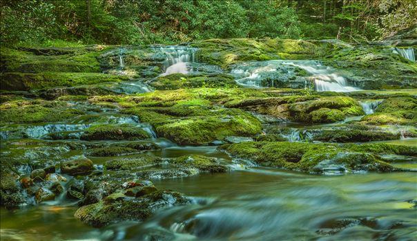 Dingmans Brook by Buckmaster
