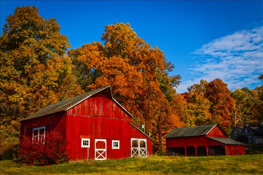 Hainesville, Nj Red Barn   Farm-.jpg by Buckmaster