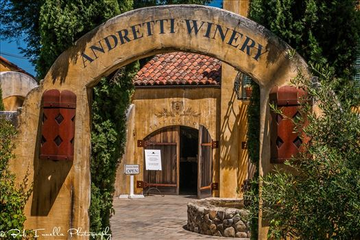 Andretti Winery, Napa, CA_2 by Buckmaster