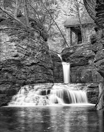 Adam's Creek Falls Black and White by Buckmaster