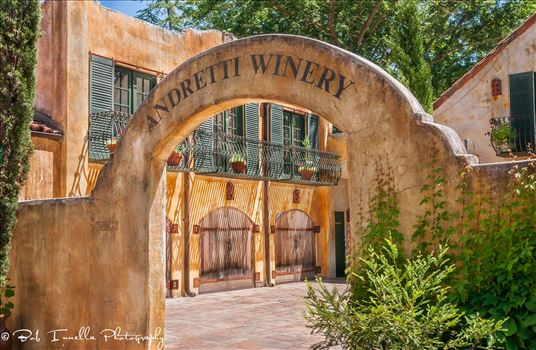 Andretti Winery, Napa, CA3 by Buckmaster