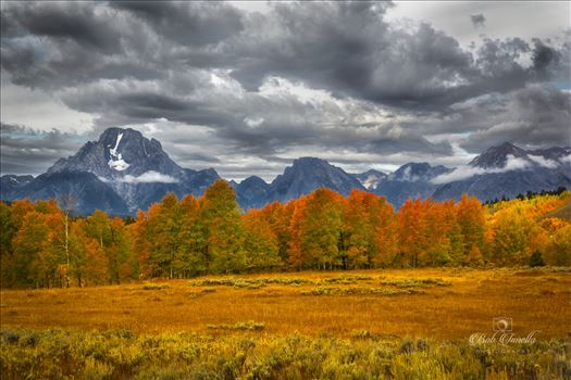 Grand Tetons by Buckmaster