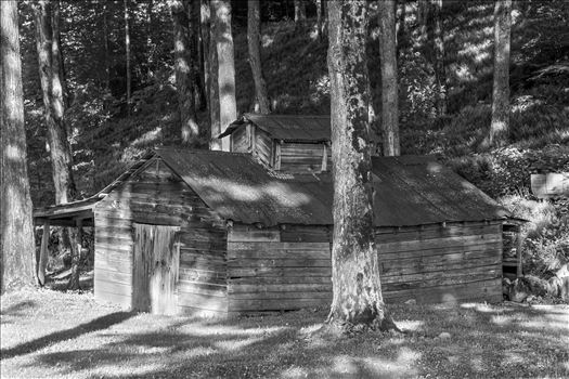 Old Vermont Sugar House in Black and White by Buckmaster