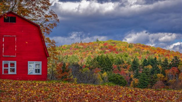 Vermont Red Barn by Buckmaster