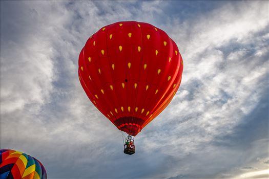 Glens Falls Balloon Festival by Buckmaster