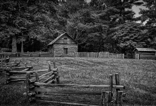 Puckett Cabin On Blue Ridge Parkway, Virginia by Buckmaster